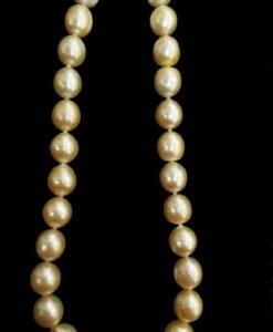 gold lip south sea perler 15,3 mm